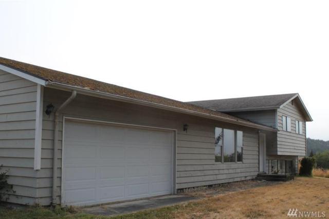 170 Morgison Lp, Sequim, WA 98382 (#1187344) :: Ben Kinney Real Estate Team
