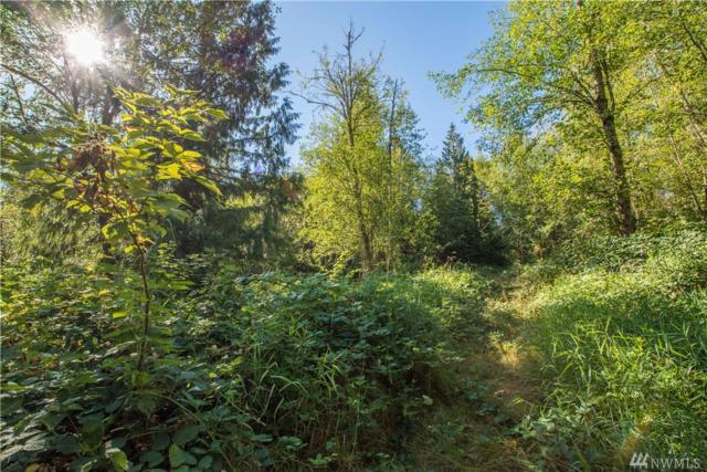 66-XX West Snoqualmie Valley Rd NE, Carnation, WA 98014 (#1187831) :: Ben Kinney Real Estate Team