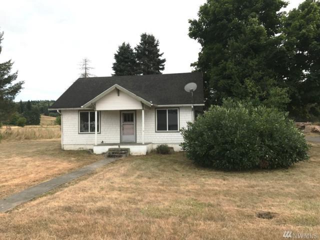 503 Pe Ell Ave, Pe Ell, WA 98572 (#1187982) :: Ben Kinney Real Estate Team