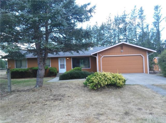 30511 335th Ave SE, Ravensdale, WA 98051 (#1188380) :: Ben Kinney Real Estate Team