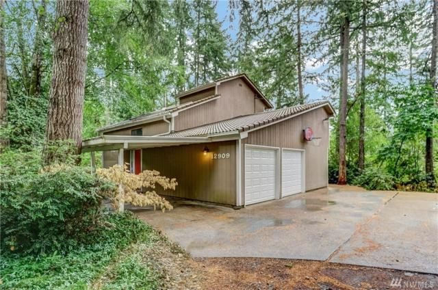 12909 97th Ave NW, Gig Harbor, WA 98329 (#1188667) :: Ben Kinney Real Estate Team
