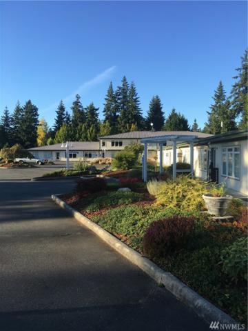207 W Patison, Port Hadlock, WA 98339 (#1189011) :: Ben Kinney Real Estate Team
