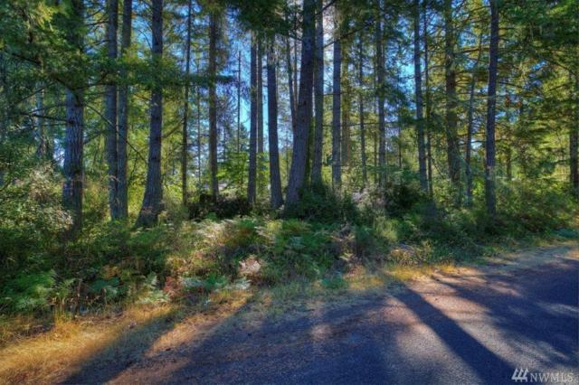 0 25th St Ct KP, Lakebay, WA 98349 (#1189151) :: Ben Kinney Real Estate Team