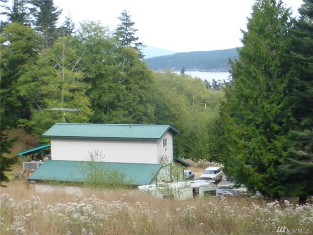 1052 Lopez Sound Rd, Lopez Island, WA 98261 (#1189646) :: Ben Kinney Real Estate Team