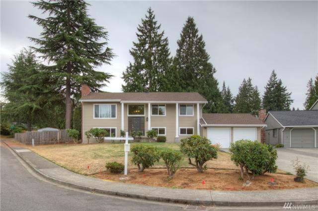 1019 144th Place SE, Bellevue, WA 98007 (#1189999) :: Ben Kinney Real Estate Team