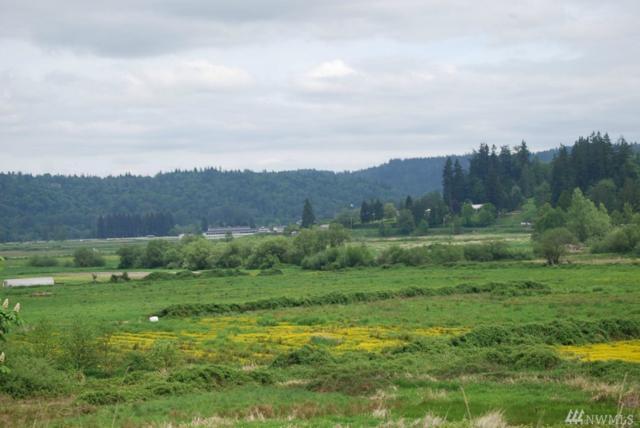 6599 West Snoqualmie Valley Road NE, Carnation, WA 98014 (#1190359) :: Ben Kinney Real Estate Team