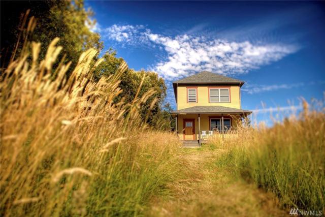 28 Milagra Lane, Lopez Island, WA 98261 (#1191003) :: Ben Kinney Real Estate Team