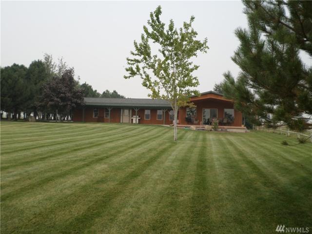 23527 Rd B Ne, Soap Lake, WA 98851 (#1191044) :: Ben Kinney Real Estate Team