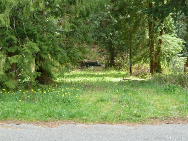 7884 Santa Fe Trail, Maple Falls, WA 98266 (#1191856) :: Ben Kinney Real Estate Team