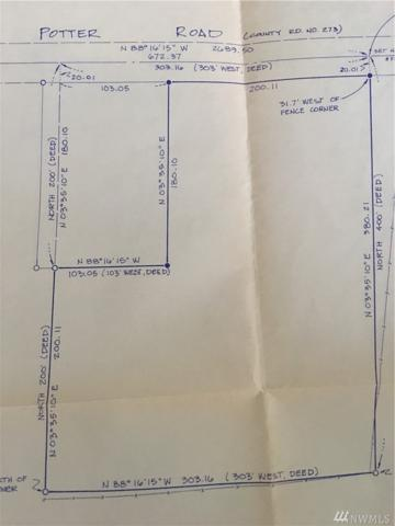 55-xx Potter Rd, Deming, WA 98244 (#1192159) :: Ben Kinney Real Estate Team