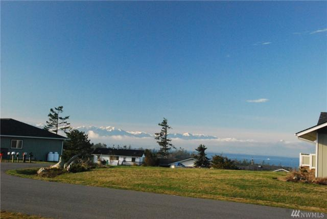 0 El Cine, Coupeville, WA 98239 (#1192499) :: The Craig McKenzie Team