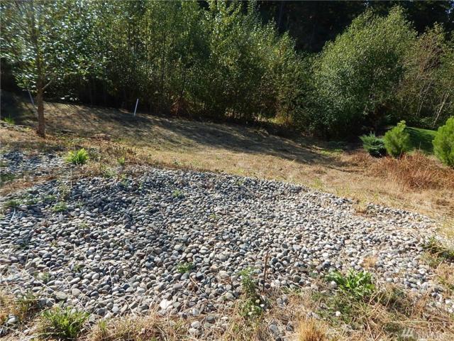 3404 Sitka Ct, Bellingham, WA 98226 (#1192810) :: Ben Kinney Real Estate Team