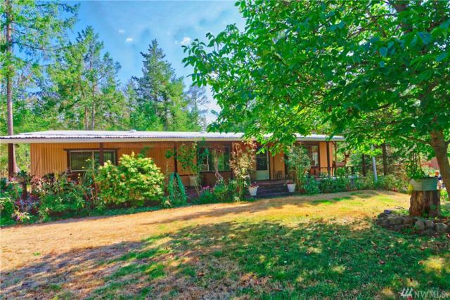 25014 48th Ave E, Graham, WA 98338 (#1192998) :: Mosaic Home Group