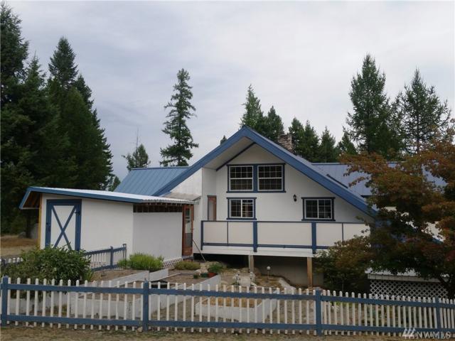 29 Hawk Ridge Road, Tonasket, WA 98855 (#1193094) :: Ben Kinney Real Estate Team