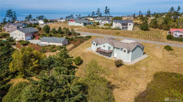 663 La Cana St, Coupeville, WA 98239 (#1193200) :: The Craig McKenzie Team