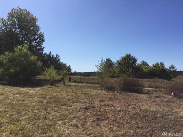 479 Sweetbrier, Lopez Island, WA 98261 (#1193538) :: Ben Kinney Real Estate Team