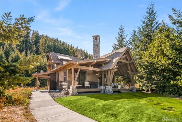 81 Saddle Ridge Lp, Cle Elum, WA 98922 (#1193666) :: Ben Kinney Real Estate Team