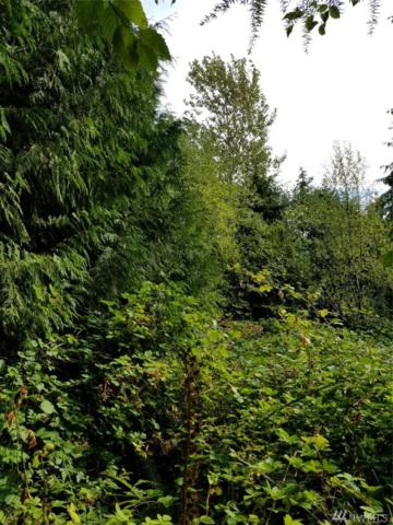 1 Weyers Lane SW, Port Orchard, WA 98367 (#1193817) :: Real Estate Solutions Group