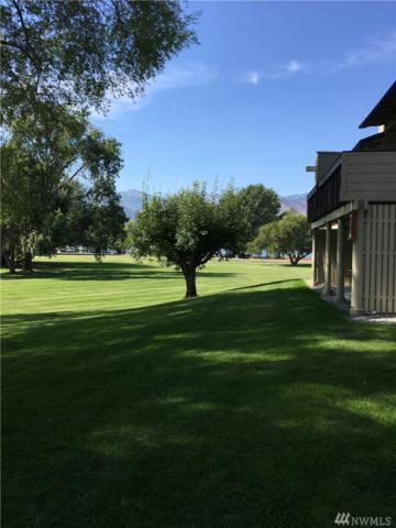 1 Ellowee K-16-G, Manson, WA 98831 (#1193977) :: Nick McLean Real Estate Group
