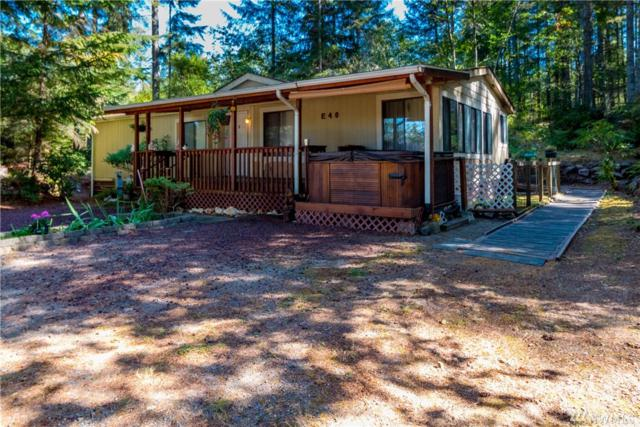 40 E Olympic View Dr, Belfair, WA 98528 (#1194330) :: Ben Kinney Real Estate Team