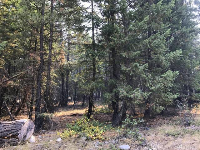 0-Lot 65 Littell Rd, Mazama, WA 98833 (#1195080) :: Brandon Nelson Partners