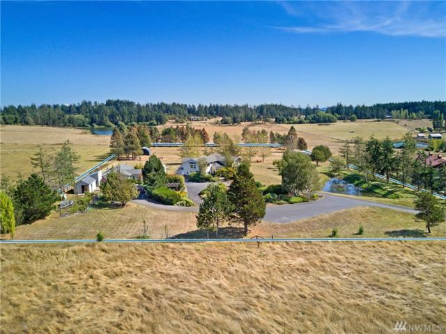 318 Trumpeter Wy, Friday Harbor, WA 98250 (#1195891) :: Ben Kinney Real Estate Team