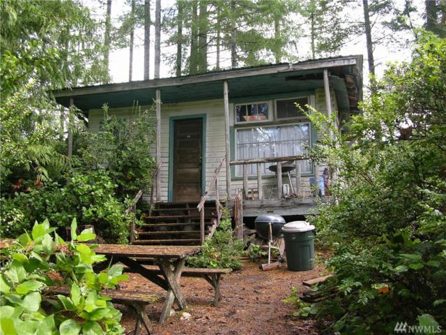 280-Lt 14 E Benson Lake Dr, Grapeview, WA 98546 (#1195987) :: Ben Kinney Real Estate Team