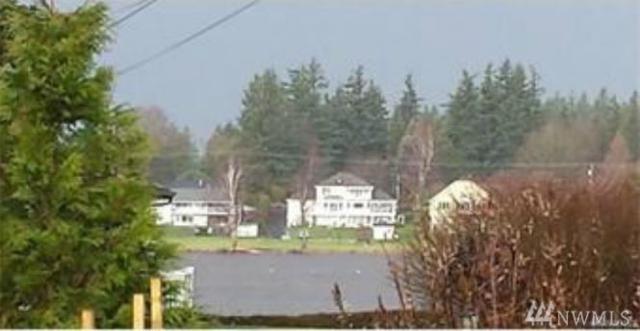 137 Misty Waters Lane, Lynden, WA 98248 (#1196022) :: Ben Kinney Real Estate Team