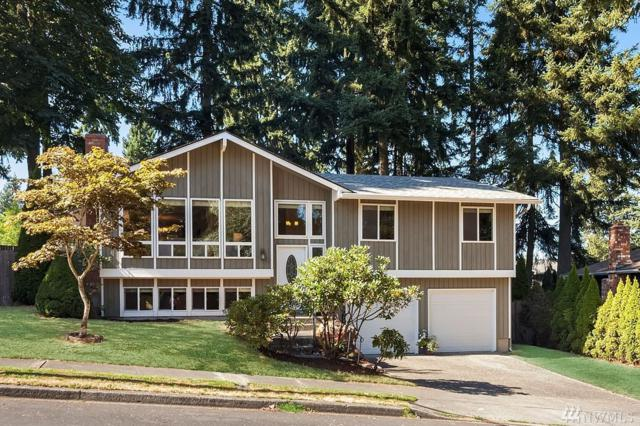 229 Bremerton Ave SE, Renton, WA 98059 (#1196400) :: Keller Williams - Shook Home Group