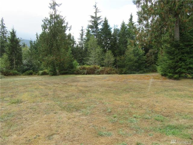30615 Mountain Loop Hwy, Granite Falls, WA 98252 (#1197000) :: Ben Kinney Real Estate Team
