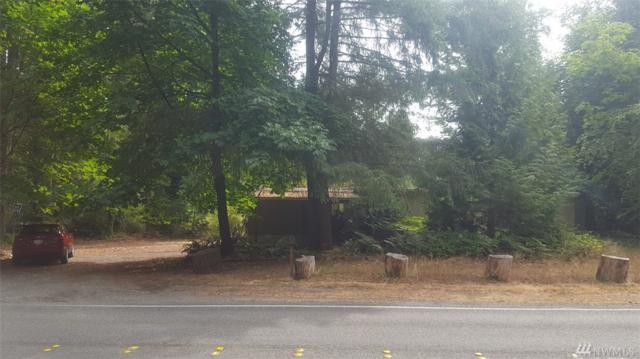 4314 NE Meridian Rd, Lacey, WA 98516 (#1197037) :: Ben Kinney Real Estate Team