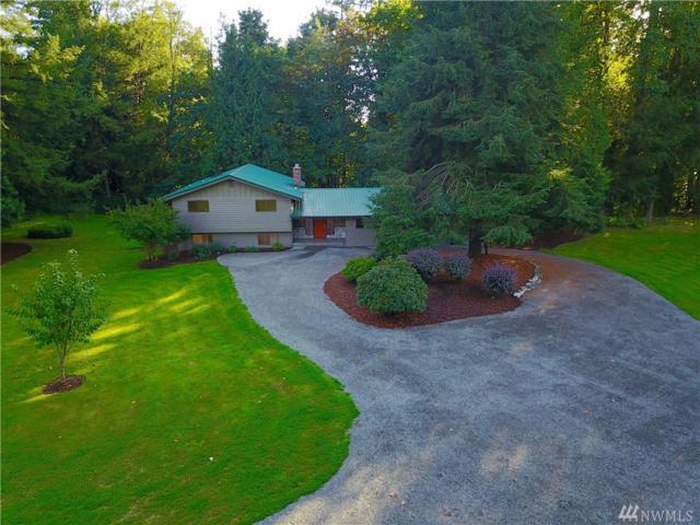 9236 Delta Line Rd, Custer, WA 98240 (#1197265) :: Ben Kinney Real Estate Team