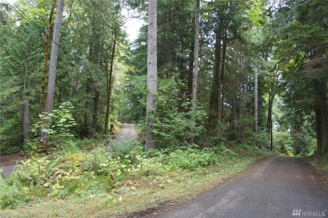 31 N Bow Tree Lane, Lilliwaup, WA 98555 (#1197524) :: Ben Kinney Real Estate Team