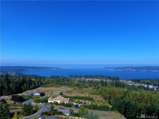 313 View Ridge Dr, Sequim, WA 98382 (#1197866) :: Crutcher Dennis - My Puget Sound Homes