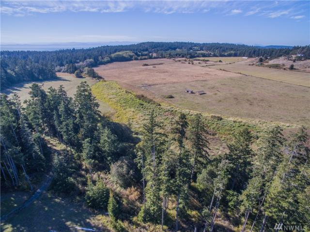 252-B Fieldstone Rd, Friday Harbor, WA 98250 (#1198007) :: Ben Kinney Real Estate Team