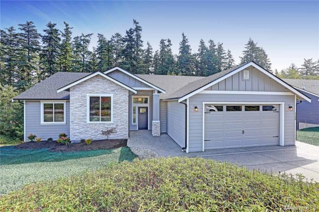 1135 Swiss Alps Lp, Camano Island, WA 98282 (#1198253) :: Ben Kinney Real Estate Team