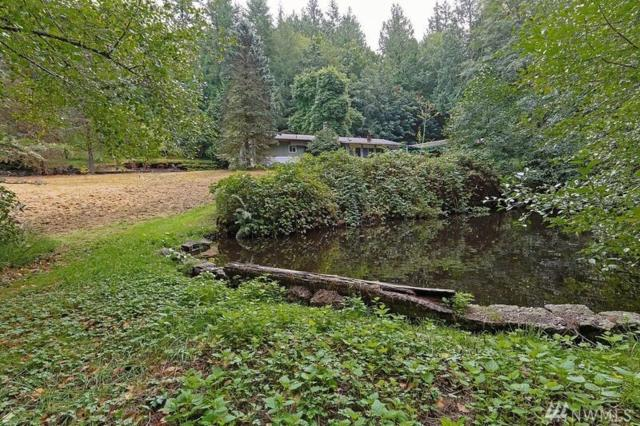 1869 NE Duck Pond Wy, Poulsbo, WA 98370 (#1198296) :: Ben Kinney Real Estate Team