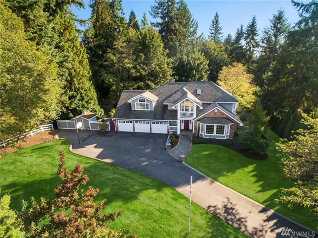 15808 163rd Ave NE, Woodinville, WA 98072 (#1198299) :: Ben Kinney Real Estate Team