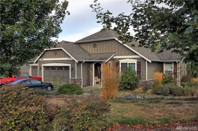 17225 Bulltrout Lane, Mount Vernon, WA 98274 (#1198596) :: Homes on the Sound