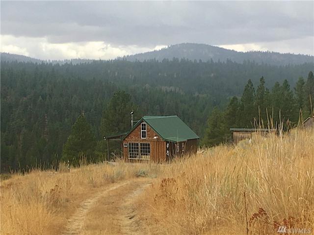 7 Ridge Top Dr, Tonasket, WA 98855 (#1198610) :: Ben Kinney Real Estate Team