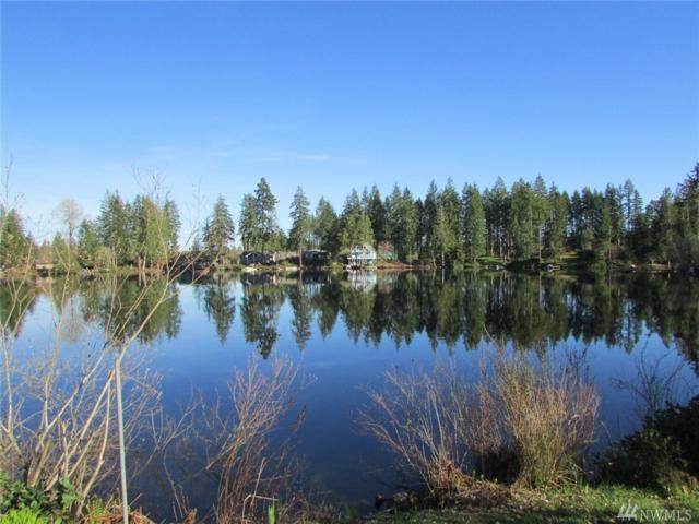 840 E Benson Lake Rd, Grapeview, WA 98545 (#1198905) :: Ben Kinney Real Estate Team