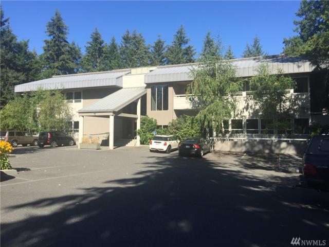 600 Ericksen Ave NE, Bainbridge Island, WA 98110 (#1199224) :: Ben Kinney Real Estate Team