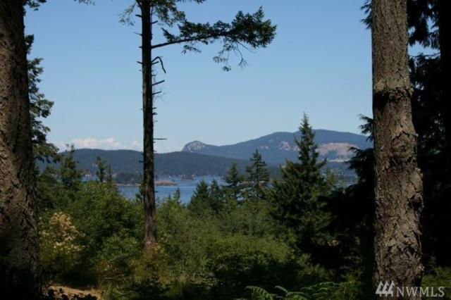 0 Bramblewood Lane, San Juan Island, WA 98250 (#1199331) :: Homes on the Sound