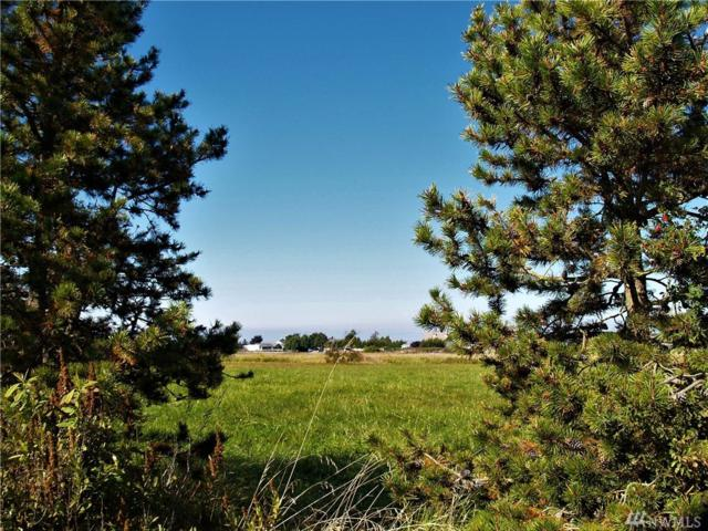 0 E Anderson Rd, Sequim, WA 98382 (#1199611) :: Homes on the Sound