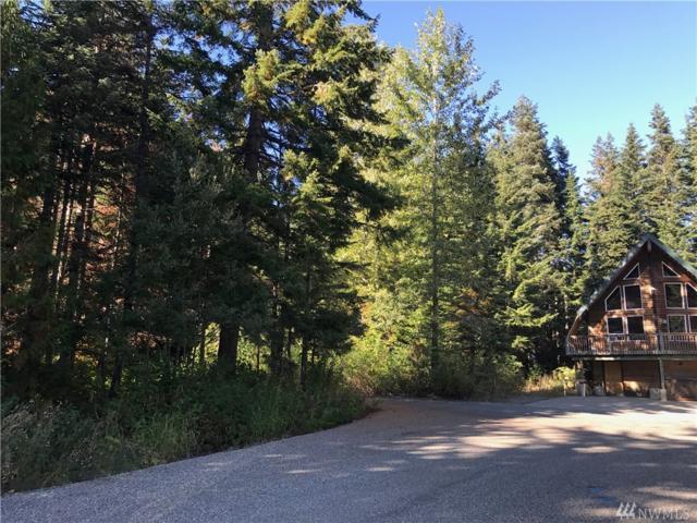 48 Kendall Pl, Snoqualmie Pass, WA 98068 (#1199875) :: Ben Kinney Real Estate Team