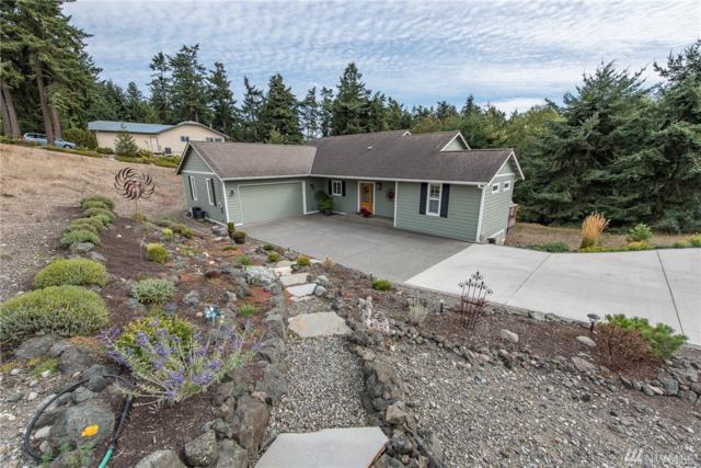 442 Ridge View Dr, Sequim, WA 98382 (#1199953) :: Ben Kinney Real Estate Team