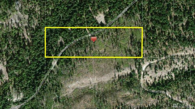 0 Haley Mountain Rd, Tonasket, WA 98855 (#1200289) :: Ben Kinney Real Estate Team