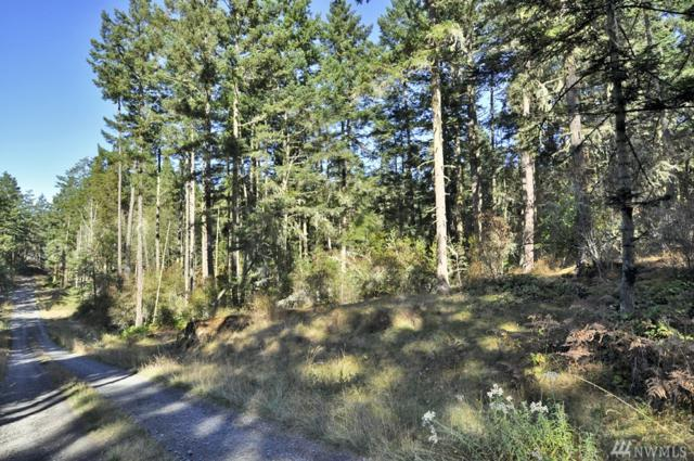 0-Lot H Little Mountain Rd, San Juan Island, WA 98250 (#1200508) :: Homes on the Sound