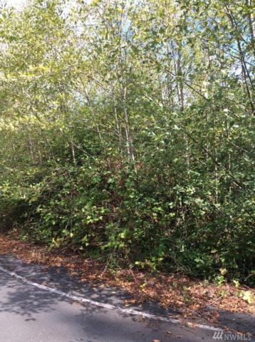 1 Dolce Lane, Elma, WA 98541 (#1200878) :: Ben Kinney Real Estate Team