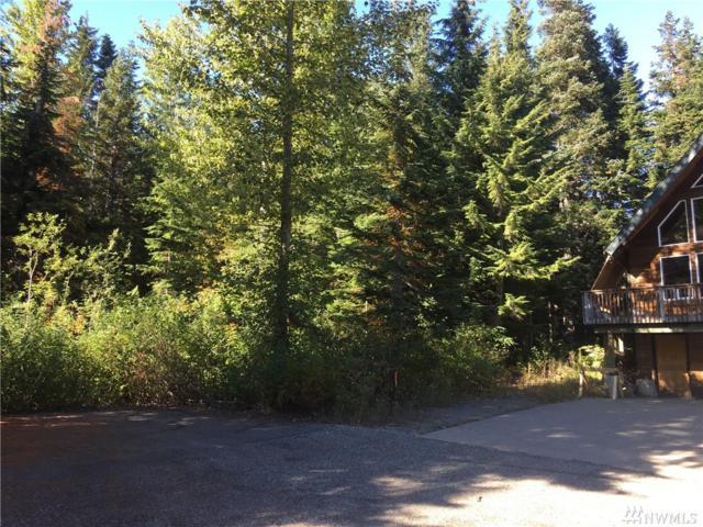 49 Kendall Pl, Snoqualmie Pass, WA 98068 (#1200979) :: Ben Kinney Real Estate Team